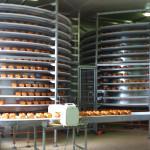 convoyeur-bande-industrie-agroalimentaire